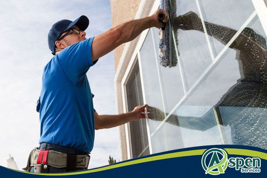 Top 5 Window Cleaning Tricks and Techniques